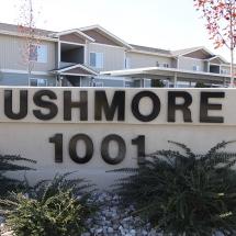 Rushmore 1